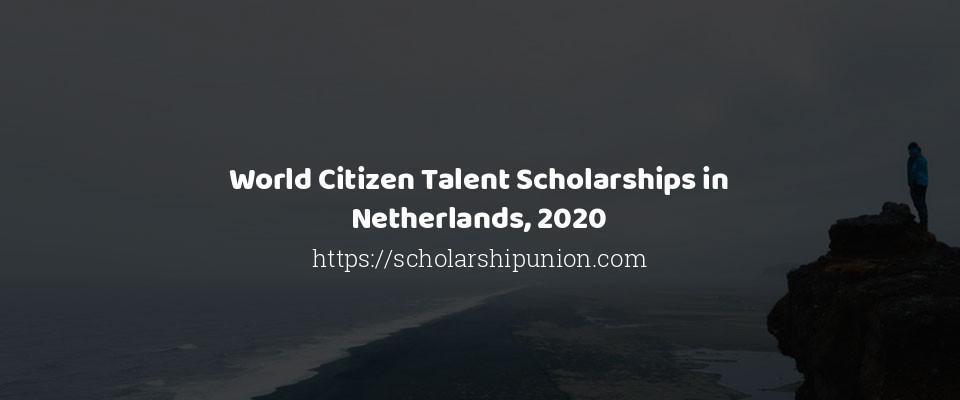World Citizen Talent Scholarships in Netherlands, 2020