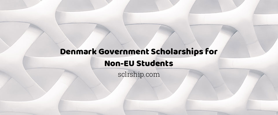 Denmark Government Scholarships for Non-EU Students
