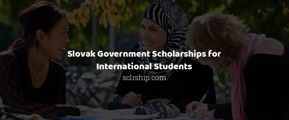 Slovak Government Scholarships for International Students