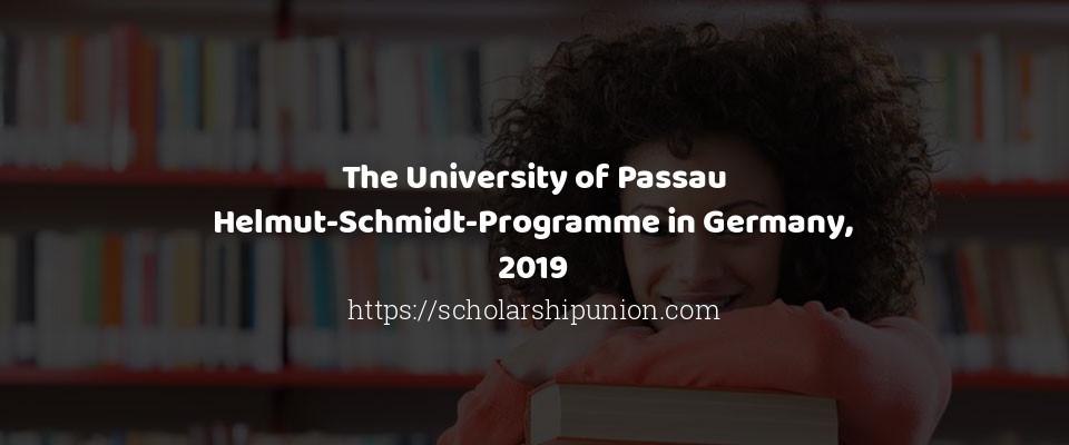 The University of Passau Helmut-Schmidt-Programme in Germany, 2019